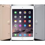 <b>iPad Mini 3</b>